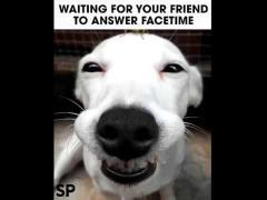 Facetime Smile
